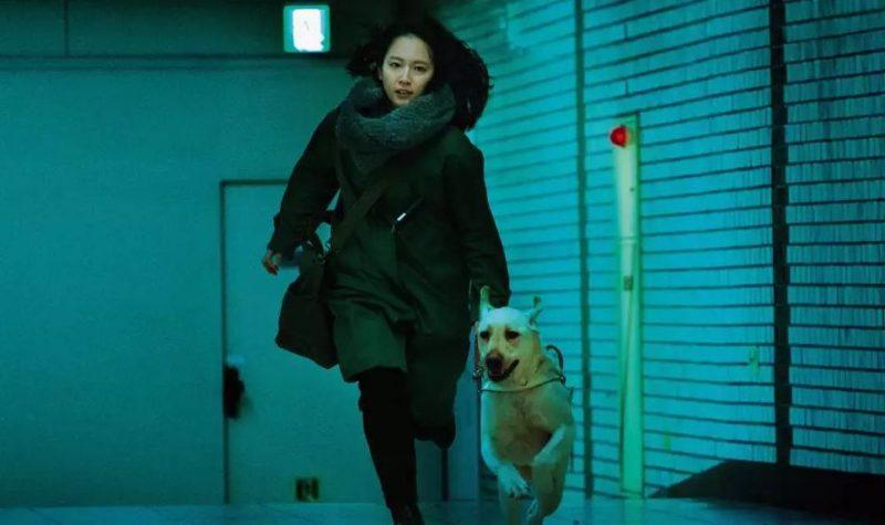 映画「見えない目撃者」日本版フル動画