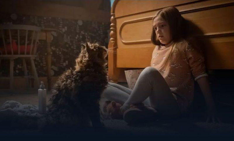 映画「ペット・セメタリー」2019年版吹き替えフル動画